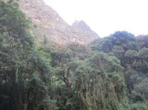 070 Cusco-Macchu Pichu 22-09-2015