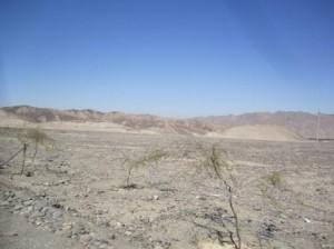073 Ica-Nazca 12-09-2015